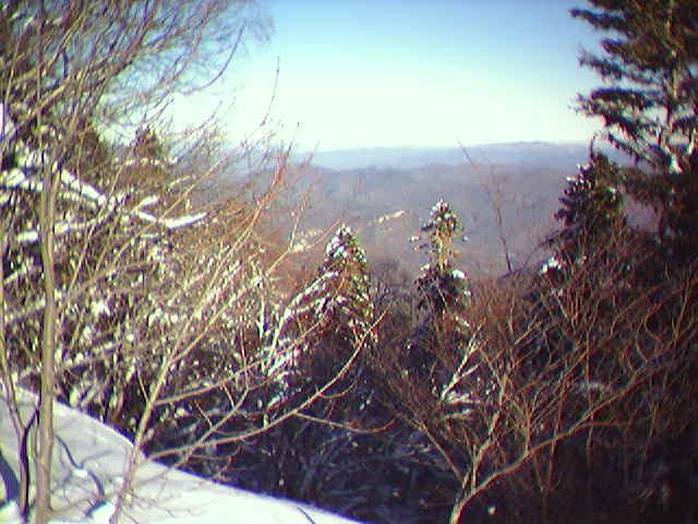 Фото альбом лесо горы 2